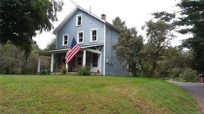 Single Family Home For Sale: 2351 State Route 300