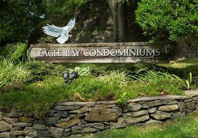 Ossining Condo/Townhouse For Sale: 109 Eagle Bay Drive
