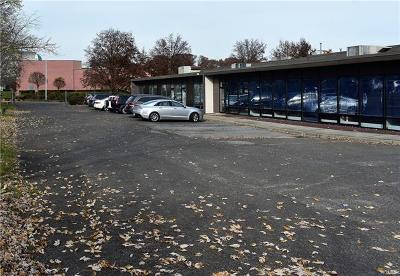 Rockland County Commercial For Sale: 15 Holt Drive