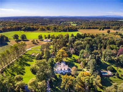 Dutchess County Single Family Home For Sale: 539 Killearn Road