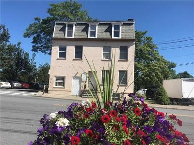 Orange County, Sullivan County, Ulster County Rental For Rent: 51 Greenwich Avenue #3