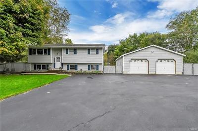 Chester Single Family Home For Sale: 27 Park Drive