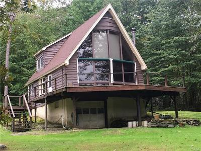 Delaware County Single Family Home For Sale: 780 Stockport Road