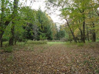Residential Lots & Land For Sale: 1357 Horseshoe Lake Road