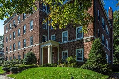 Westchester County Rental For Rent: 9 Alden Place #4D