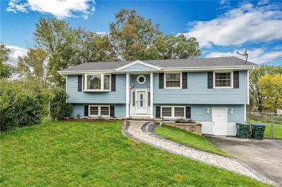 Goshen Single Family Home For Sale: 6 Aspen Lane