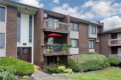 Rockland County Condo/Townhouse For Sale: 160 Country Club Lane #15