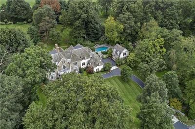 Chappaqua Single Family Home For Sale: 51 Carolyn Place