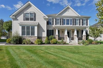 Dutchess County Single Family Home For Sale: 8 Chestnut Street