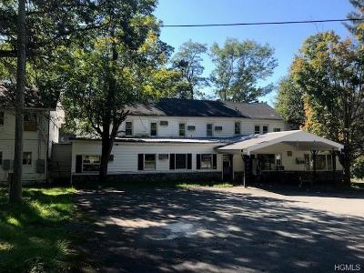 Narrowsburg Multi Family 2-4 For Sale: 6319 Nys Route 97