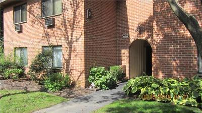 Ossining Condo/Townhouse For Sale: 9 Briarcliff Drive South #14