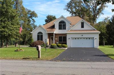 Wappingers Falls Single Family Home For Sale: 204 Old Castle Point Road
