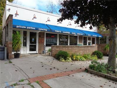Commercial For Sale: 22 Green Avenue