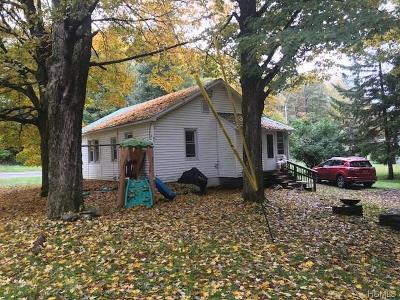 Grahamsville Single Family Home For Sale: 425 Main Street
