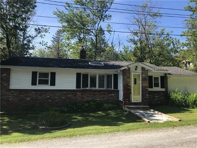 Livingston Manor NY Single Family Home For Sale: $115,000