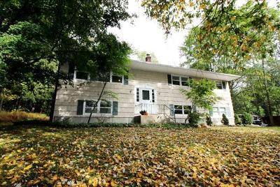 Putnam County Single Family Home For Sale: 38 Spruce Knolls Road