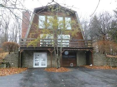 Port Jervis Single Family Home For Sale: 1258 Greenville Turnpike