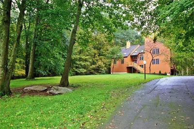 Putnam County Single Family Home For Sale: 51 Nicole Way