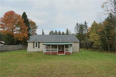 Parksville NY Single Family Home For Sale: $39,800