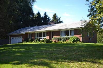 Wingdale Single Family Home For Sale: 1801 Route 22