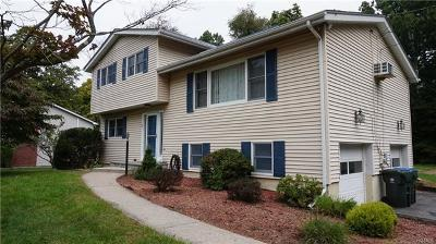 Chester Single Family Home For Sale: 11 Townsend Place