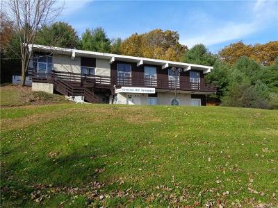 Sullivan County Commercial For Sale: 271 Lake Louise Marie Road