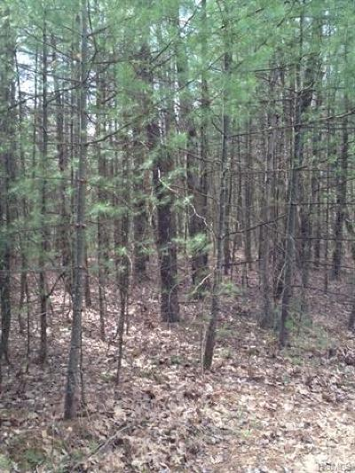 Residential Lots & Land For Sale: Lot #1 Summit Drive