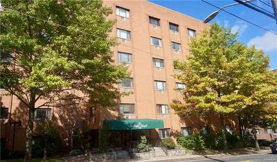 White Plains Condo/Townhouse For Sale: 21 Lake Street #3G