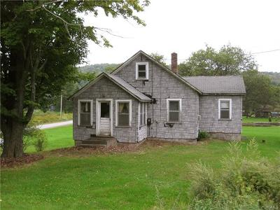 Single Family Home For Sale: 4325 State Route 52