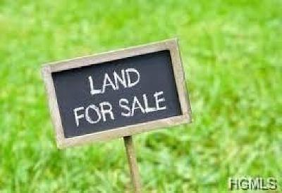 Red Hook Residential Lots & Land For Sale: East Willets Drive