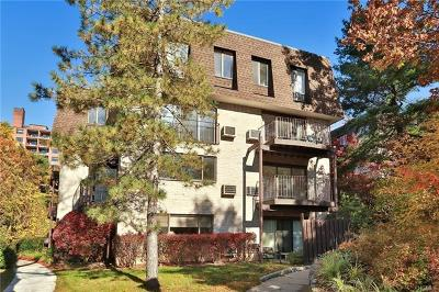 Ossining Condo/Townhouse For Sale: 3 Revolutionary Road #4-03