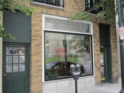 Hastings-On-Hudson Commercial For Sale: 603 Warburton #2