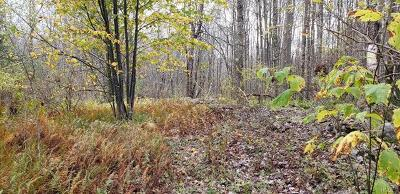 Parksville NY Residential Lots & Land For Sale: $119,000