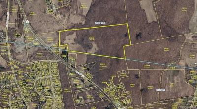 Lagrangeville Residential Lots & Land For Sale: Route 55 Rear