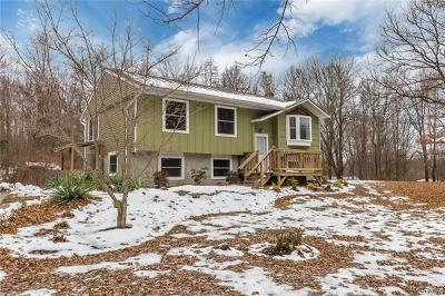 New Paltz Single Family Home For Sale: 521 North Ohioville Road