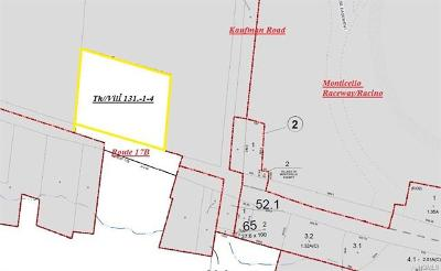 Monticello NY Residential Lots & Land For Sale: $950,000