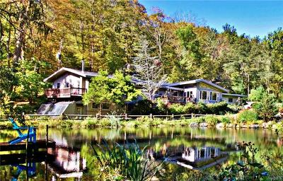 Putnam County Single Family Home For Sale: 1 Sunrise Drive