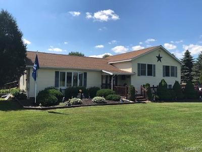 Liberty NY Single Family Home For Sale: $299,000