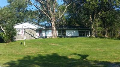 Monticello Single Family Home For Sale: 640 State Route 17b