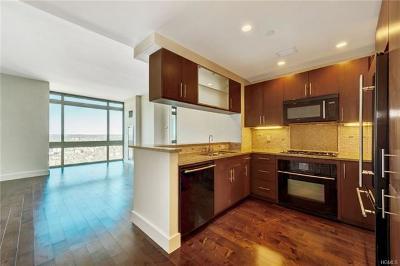 New Rochelle Rental For Rent: 175 Huguenot Street #3104