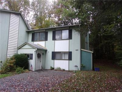 Sullivan County Single Family Home For Sale: 19 Robert Road