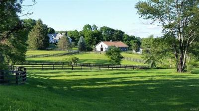 pawling Single Family Home For Sale: 738 North Quaker Hill Road