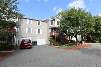 Ellenville Condo/Townhouse For Sale: 306 Mountain View Lane