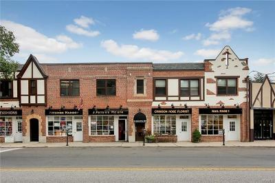 Bronxville Commercial For Sale: 495 New Rochelle Road