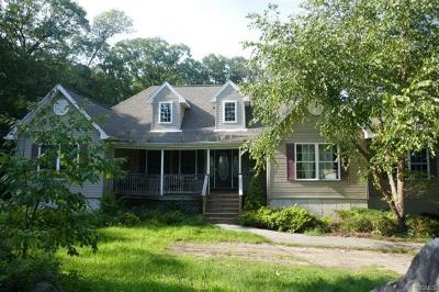 Rockland County Single Family Home For Sale: 31 Apple Street