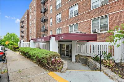 Yonkers Co-Operative For Sale: 42 Pine Street #1B