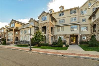 Rockland County Condo/Townhouse For Sale: 3107 Parkview Drive