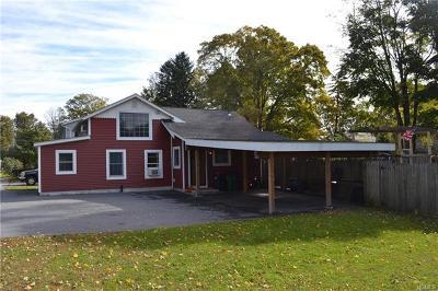 Dover Plains Single Family Home For Sale: 10 Merchant Street