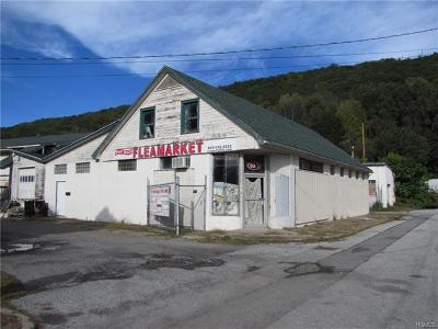Commercial For Sale: 107 West Main Street