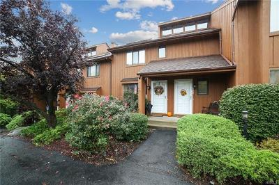 Westchester County Condo/Townhouse For Sale: 121 Panorama Drive